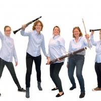 Fluit Klarinet Fagot